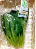 有機小松菜【島根県産、他】