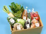 有機野菜セットB(玉ねぎ、ジャガイモ、人参+季節野菜3~4品)