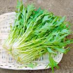 有機肥料100%栽培(無化学肥料)水菜200g 【奈良県産 他】